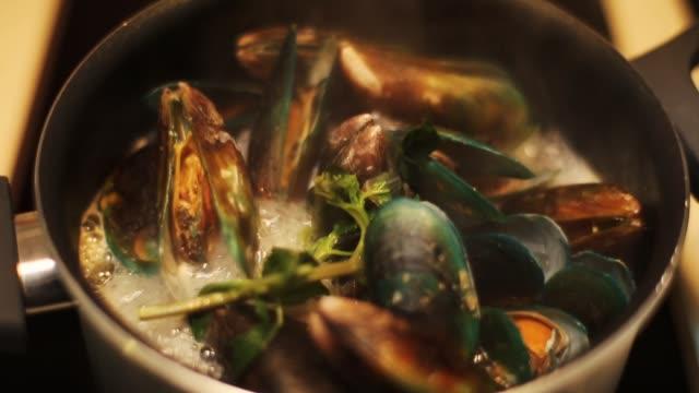 vidéos et rushes de moules de cuisson dans une casserole à la maison - bivalve