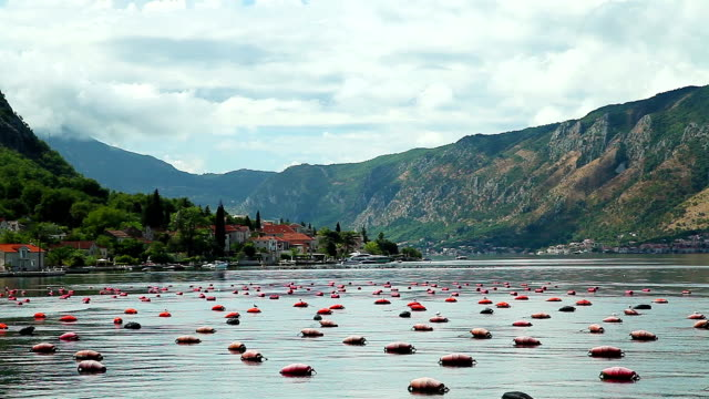 Mussels sea farm at Kotor Bay near Tivat video