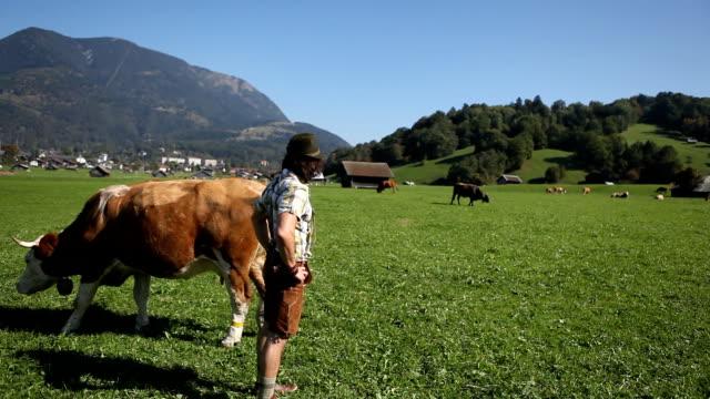 la mia vita bavarese agricoltore - costume tradizionale video stock e b–roll