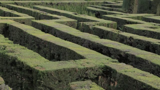 mysterious labyrinth garden - mitologia video stock e b–roll