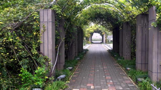 Mystic Arch In Garden.