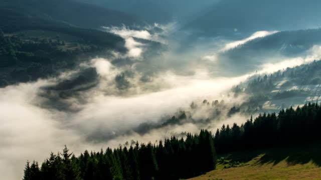 mystische nebligen morgen nebel wolken über bäume wald landschaft zeitraffer - slowakei stock-videos und b-roll-filmmaterial