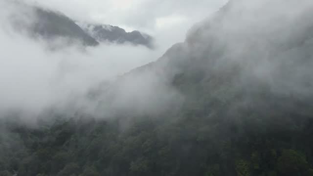 vídeos de stock, filmes e b-roll de drone aéreo místico voando através de neblina densa e floresta tropical exuberante em haast pass, uma passagem de montanha entre as regiões otago e costa oeste nos alpes do sul da ilha sul da nova zelândia. - nublado