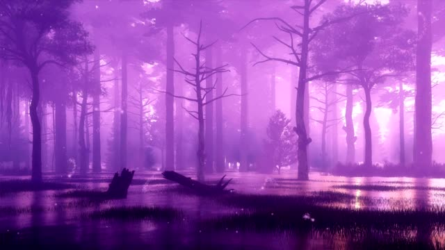 Mystical firefly lights in swampy night forest