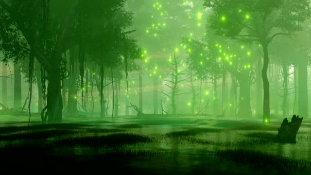 Mystical firefly lights in swampy night forest video