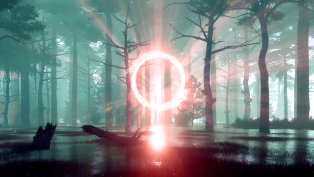 mystical foggy forest with portal to another world at sunset - fata video stock e b–roll