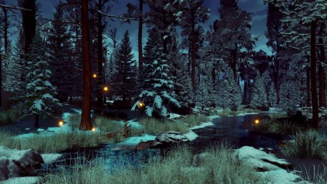 mystische winterwald mit fee gelflichter in der dämmerung oder dämmerung - käfer stock-videos und b-roll-filmmaterial