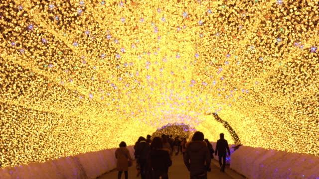 nagoya, japan. nabana ingen sato trädgård nattetid på vintern. - kulturer bildbanksvideor och videomaterial från bakom kulisserna