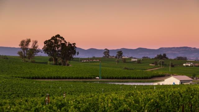 Napa Vineyard at Sunset - Time Lapse video
