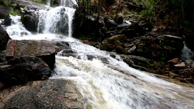 vídeos de stock, filmes e b-roll de naramata creek park cachoeira - região thompson okanagan colúmbia britânica