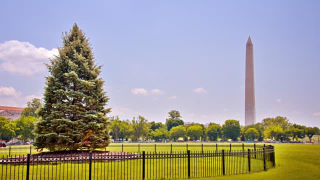 National Christmas Tree. Washington Monument. Tree. History. Nature