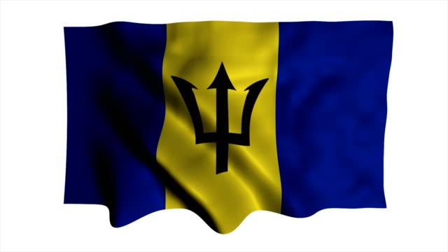 National flag Barbados video