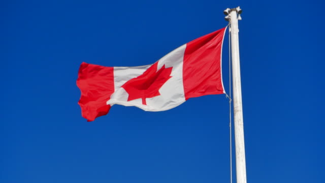 National Flag of Canada, Canadian Flag Blowing in Wind, Blue Sky Background video