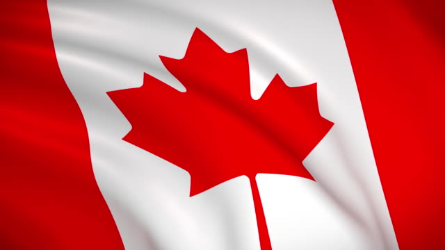 national flag of canada - canada day stock videos & royalty-free footage