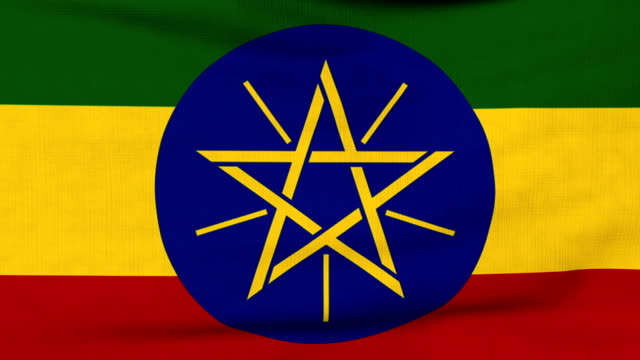 National flag of Ethiopia flying on the wind National flag of Ethiopia flying and waving on the wind. Sate symbol of Ethiopian nation and government. Computer generated animation. horn of africa stock videos & royalty-free footage