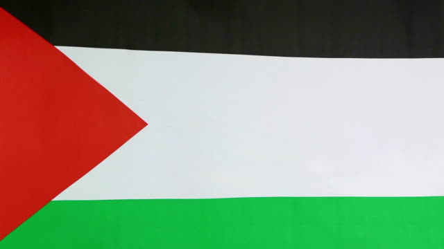 National flag of Palestine video