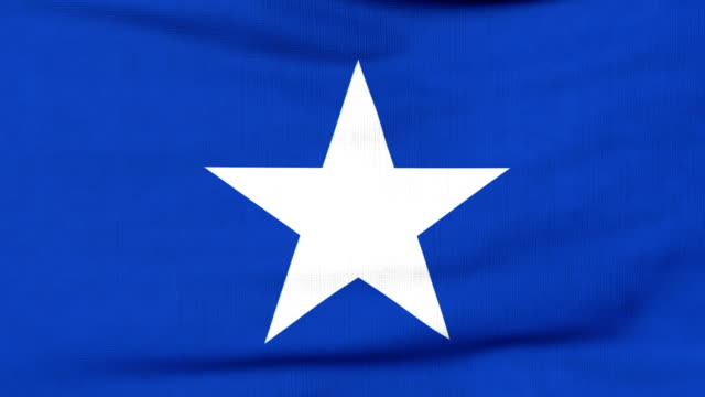National flag of Somalia flying on the wind National flag of Somalia flying and waving on the wind. Sate symbol of Somali nation and government. Computer generated animation. horn of africa stock videos & royalty-free footage