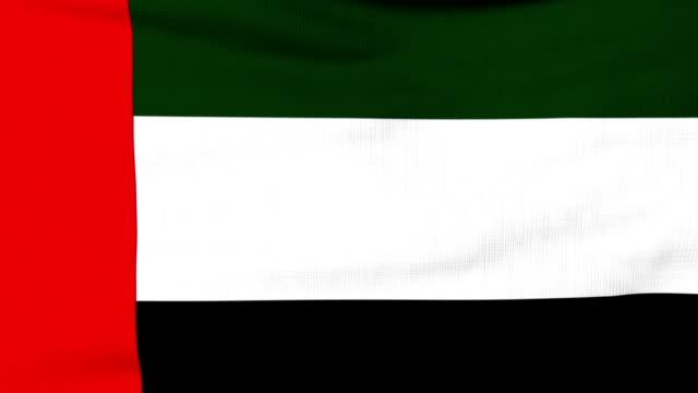 rüzgarda uçan bae ulusal bayrak - uae flag stok videoları ve detay görüntü çekimi