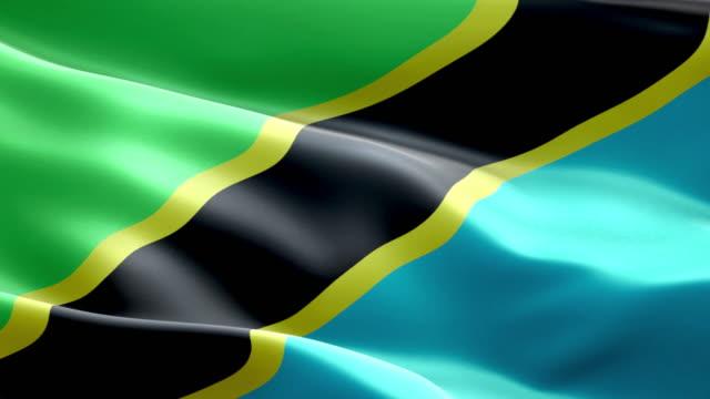 National flag tanzania wave Pattern loopable Elements National flag tanzania wave Pattern loopable Elements tanzania stock videos & royalty-free footage