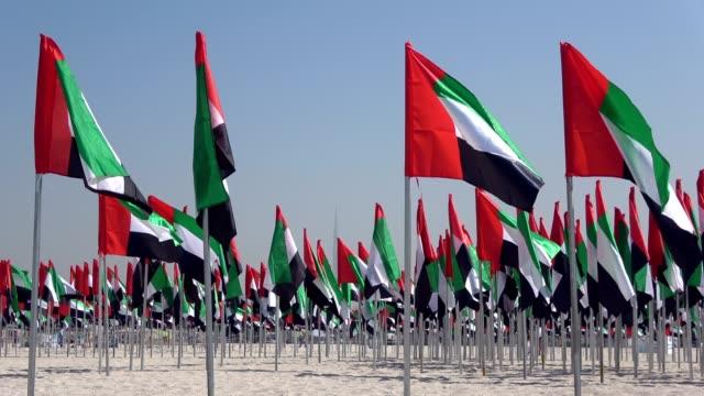 nationalflags from the united arab emirates, dubai, national oliday, beach, vae, 4k - uae flag filmów i materiałów b-roll