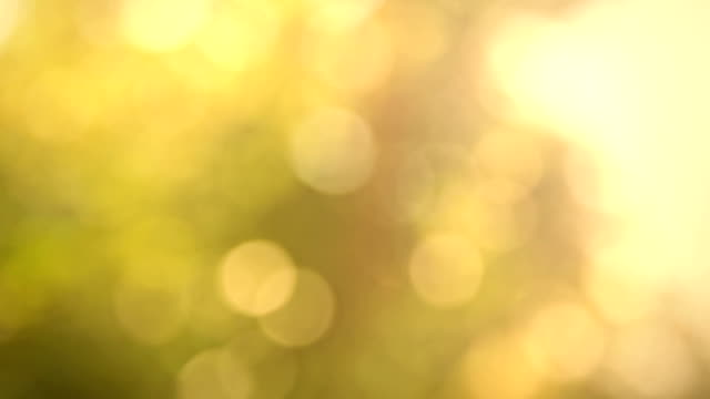 Natural bokeh http://smdesign.eu/istock/is-ntr.jpg yellow stock videos & royalty-free footage