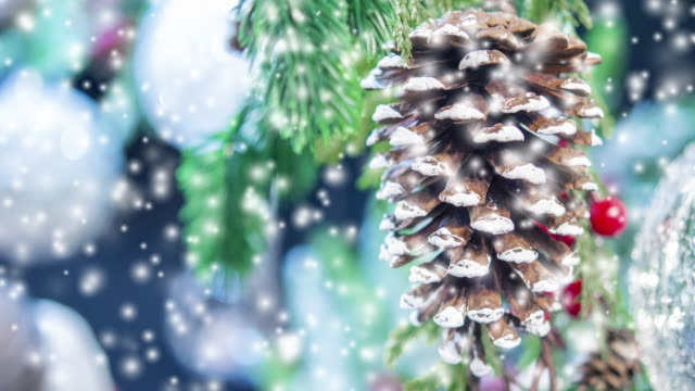 doğal noel ağacı çam kozalağı - gif stok videoları ve detay görüntü çekimi