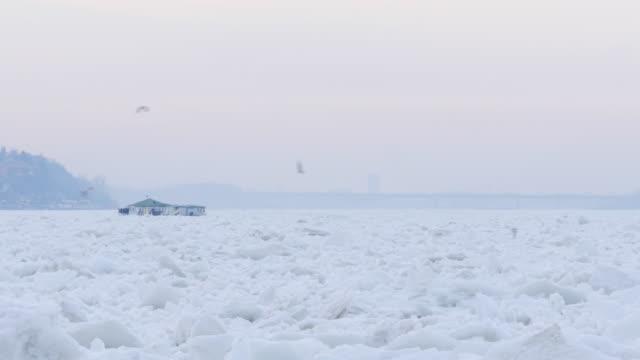 Natural Disaster video