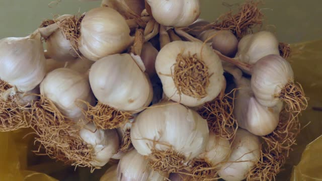 natural garlic, 1kg dry garlic with stems, - alliacee video stock e b–roll