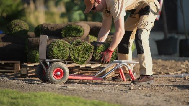 natürliche gras rasen professionelle installateur. - gärtnerisch gestaltet stock-videos und b-roll-filmmaterial