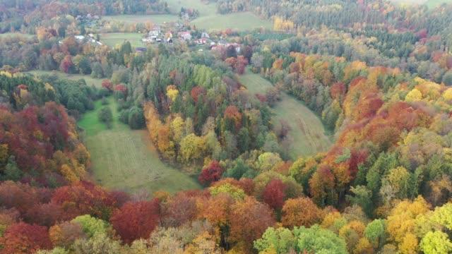 yamaçlarda sonbahar karışık ormanlık ile doğal peyzaj - gazlı bez stok videoları ve detay görüntü çekimi