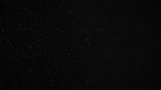 검은 배경에 떠있는 자연 유기 먼지 눈 입자. 반짝이는 반짝이는 입자는 보케와 함께 공중에서 무작위로 회전합니다. 슬로우 모션이 있는 흰색 동적 파티클. 공간에서 반짝이는 입자. - 분위기 스톡 비디오 및 b-롤 화면