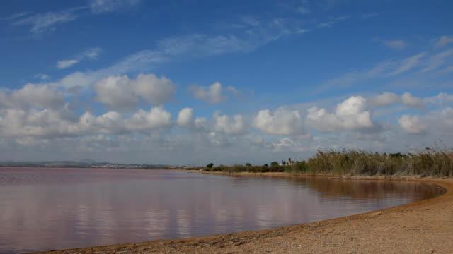 натуральный розовый salt lake. tm - илистая пойма стоковые видео и кадры b-roll