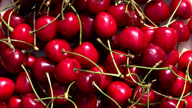 Natural ripe red cherry berry. Rotating turntable Natural ripe red cherry berry. Rotating turntable clockwise shot. FullHD cherry stock videos & royalty-free footage