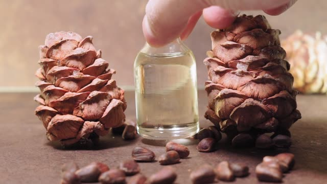 Natural Serums. Cosmetic and medicinal oil, pine nuts on a brown background. bottle of aroma oil, nuts, almonds, walnuts, macadamia. organic cosmetic products, selective focus. Spa, massage, female treatment, aromatherapy body care authentic raw material pine nut stock videos & royalty-free footage