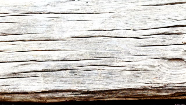 Natuurlijke houten achtergrond video