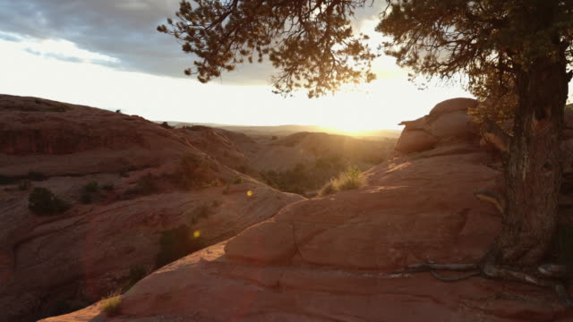 Nature at sunset in the Southwest USA, Moab