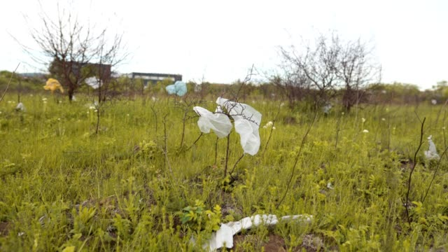 Nature beauty ruined with plastic bags