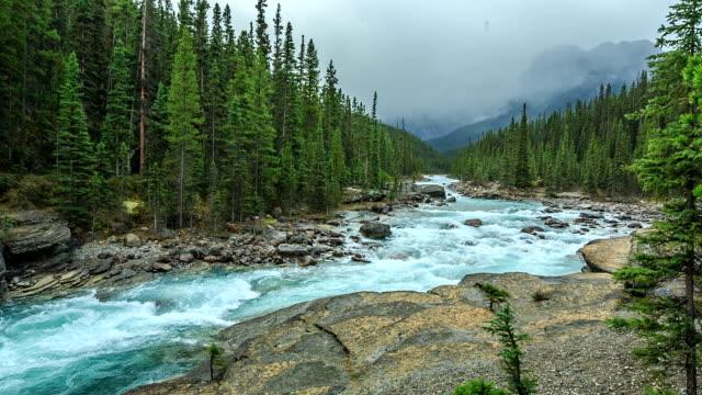Nature Canada video