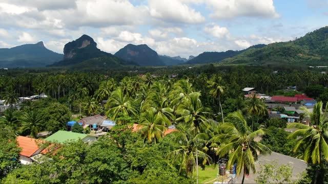 空中写真からタイの自然景観 - サムイ島点の映像素材/bロール