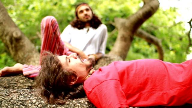 gli amanti della natura - hippy video stock e b–roll