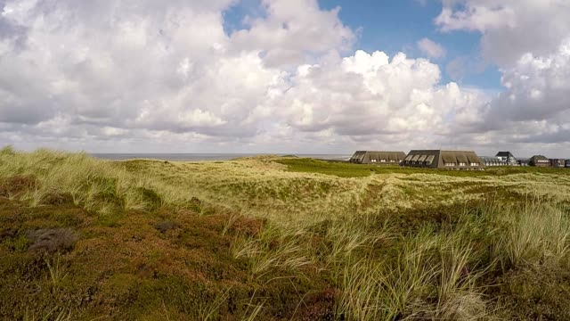 Nature reserve Braderup Heath - Sylt / Germany video