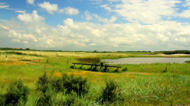 Nature reserve for nesting birds video