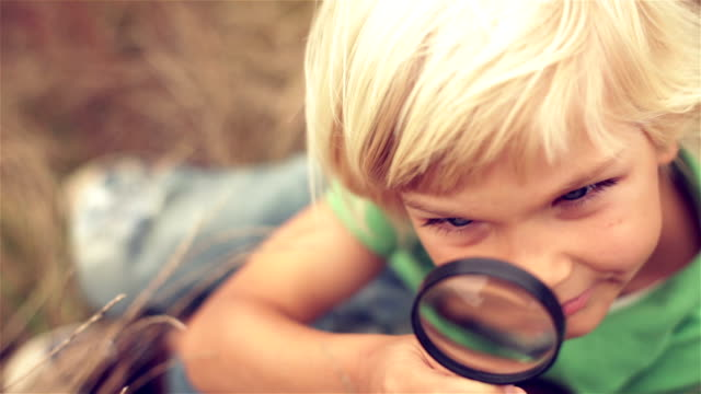 nature a boy in nature magnifying glass stock videos & royalty-free footage