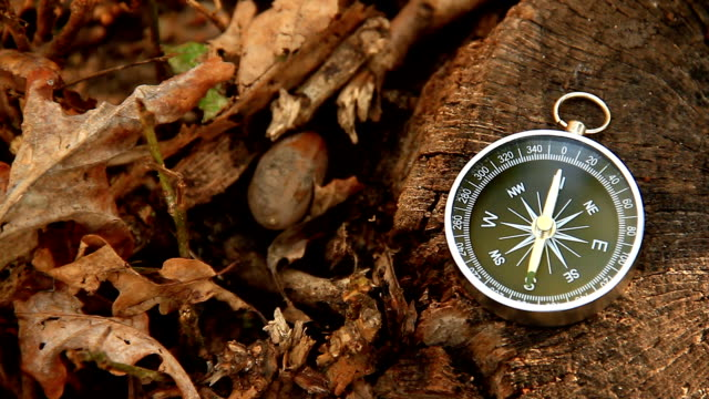 Navigation compass lies on the stump Navigation compass lies on the stump navigational compass stock videos & royalty-free footage