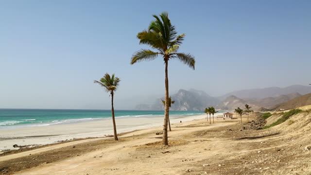 near sandy beach sky  palm   and mountain in oman arabic sea  the hill video