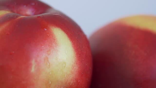 Nectarines droplet macro shot Macro shot of Nectarines dripping water nectarine stock videos & royalty-free footage