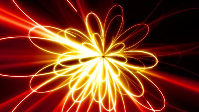 neon-Blume – Video