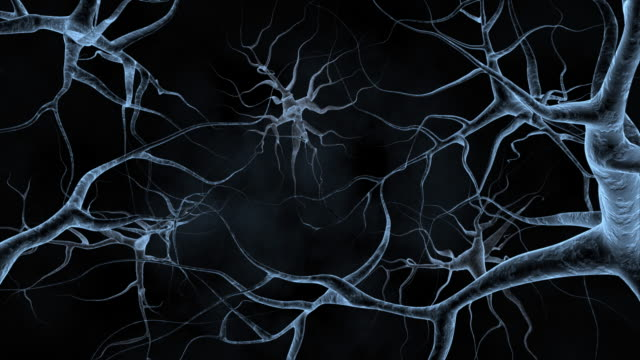 Nerves Nerve cells on a black background. Scientific research in medicine. electron micrograph stock videos & royalty-free footage