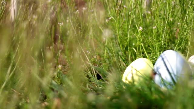 nest of easter eggs sitting in sunny grassy field on easter morning - jesus christ filmów i materiałów b-roll