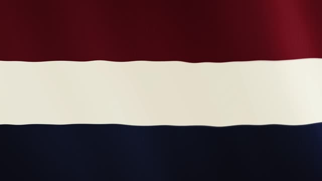 Netherlands flag waving animation. Full Screen. Symbol of the country video